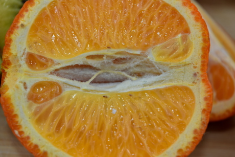 aromatic, cross section, fragment, fragrance, half, mandarin, wet, fresh, slice, healthy