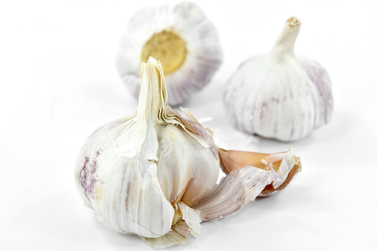 agriculture, aroma, garlic, organic, product, spice, food, vegetable, healthy, ingredients