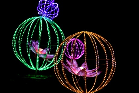 creativity, electricity, elegant, flower, illumination, lamp, spectacular, stained glass, wires, design