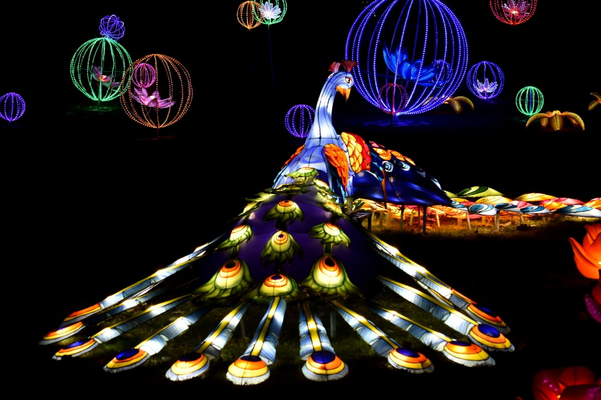 artwork, colorful, creativity, fantasy, night, peacock, sculpture, stained glass, abstract, light