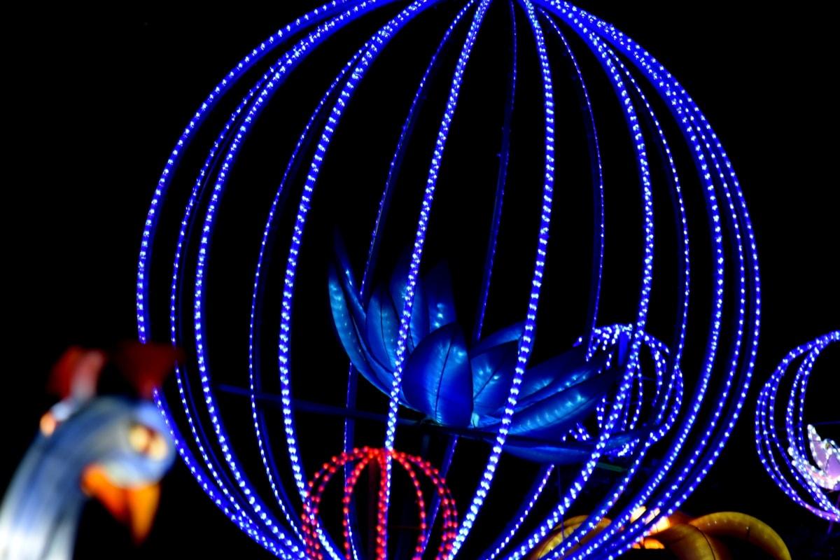arte, azul, flor, feito à mão, iluminação, luz, néon, rodada, escultura, esfera