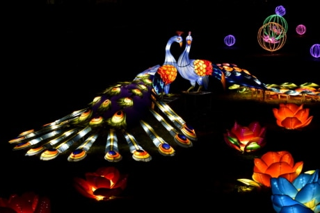 artwork, colorful, handmade, night, peacock, sculpture, spectacular, stained glass, abstract, design