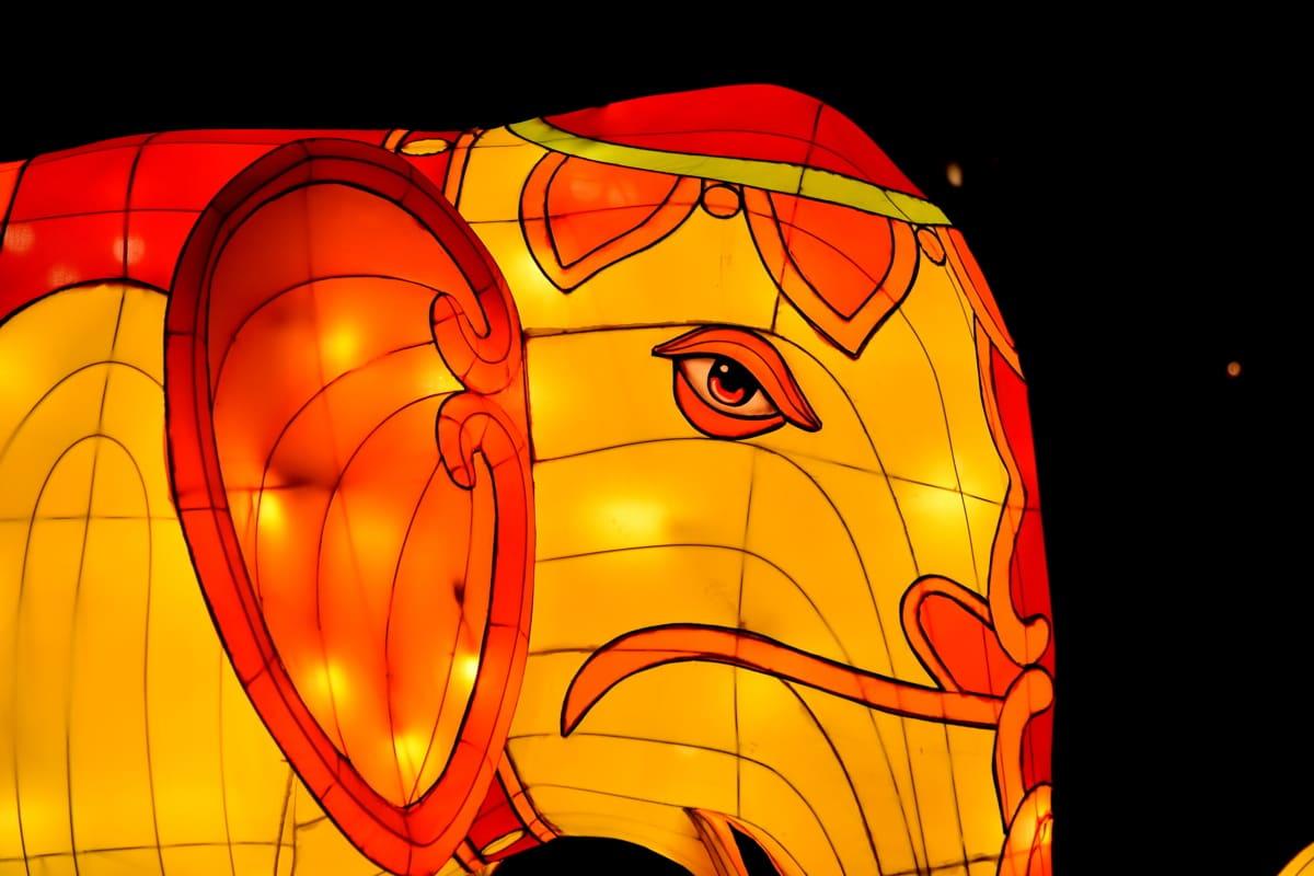 obra de arte, elefante, fantasía, cabeza, amarillo anaranjado, escultura, vidrieras, vibrante, noche, diseño
