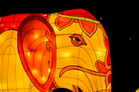 artwork, elephant, fantasy, head, orange yellow, sculpture, stained glass, vibrant, nighttime, design