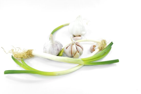 garlic, green leaves, organic, product, nature, leaf, flora, root, upclose, bright