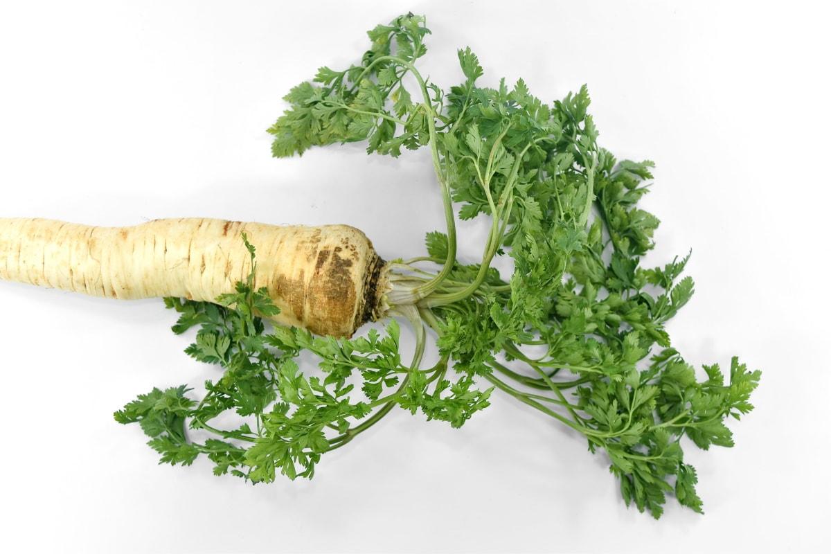 dagligvarer, organisk, persille, vegetabilsk, vitamin C, frisk, urt, mat, ingredienser, blad