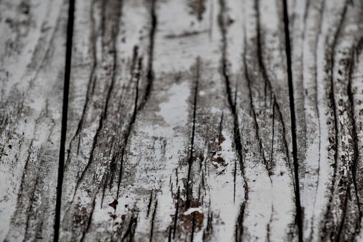 musta ja valkoinen, yksivärinen, maali, lankku, puun, valkoinen, puu, kuori, metsä, rakenne