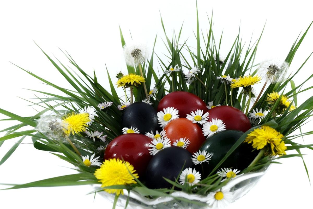 bowl, colorful, daisies, dandelion, easter, egg, grass, bright, flower, leaf