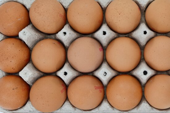 aerial, egg, egg box, food, protein, chicken, cholesterol, shell, ingredients, poultry