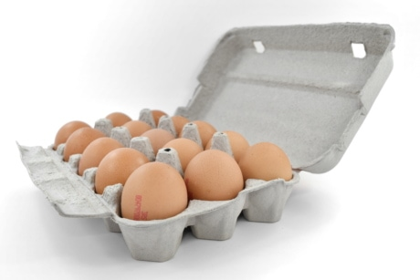 detail, dozen, egg, egg box, many, product, food, eggshell, shell, cholesterol