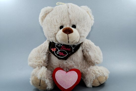 heart, love, message, romance, scarf, teddy bear toy, Valentine's day, funny, bear, gift