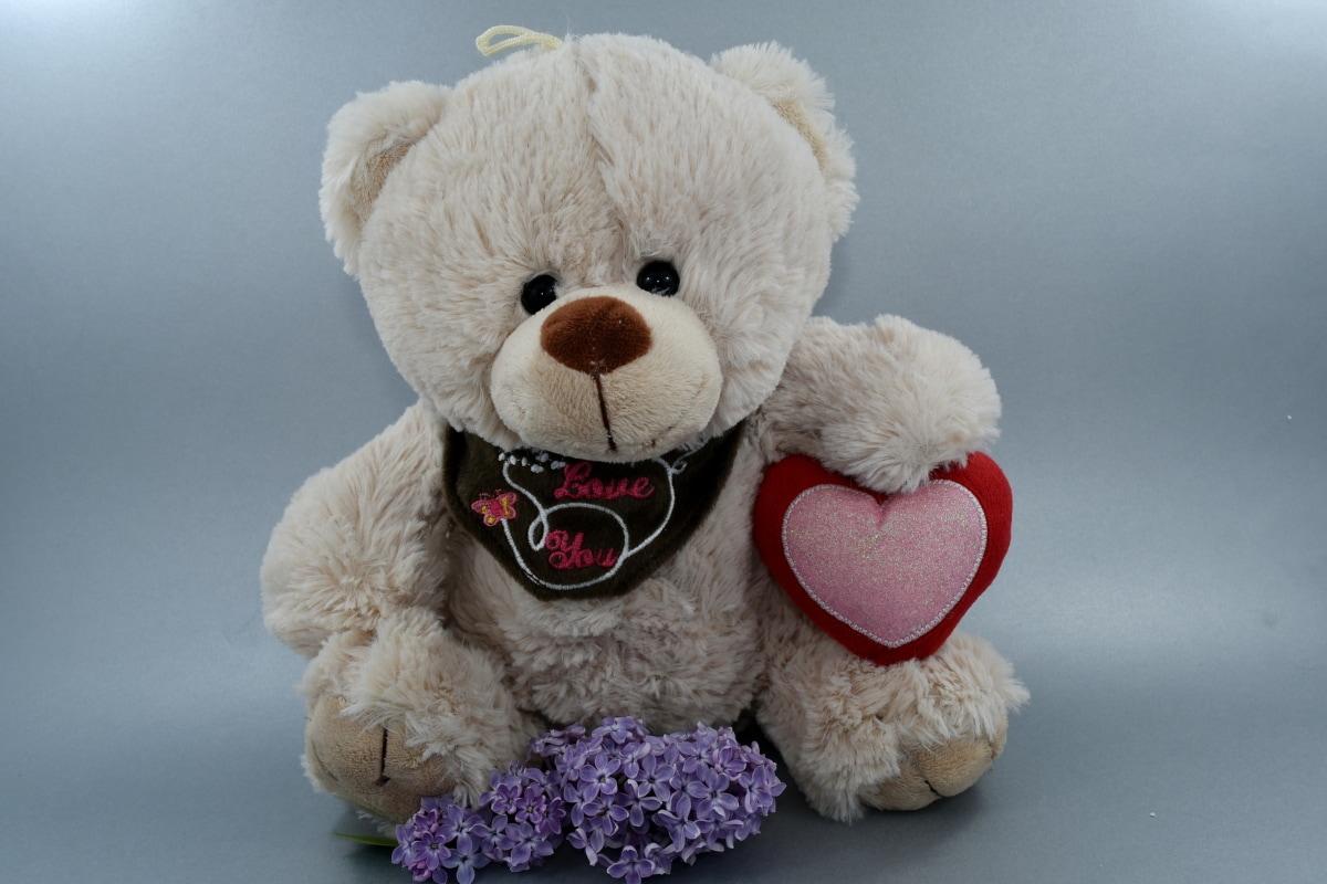 ดอกไม้, หัวใจ, สีม่วงอ่อน, ความรัก, โรแมนติก, ตุ๊กตาหมีของเล่น, ของเล่น, ของเล่น, น่ารัก, ตลก