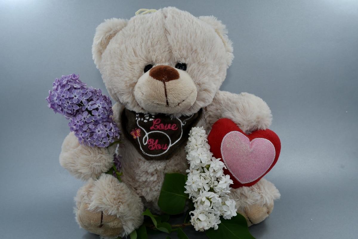 krásne kvety, darček, láska, romance, hračka medvedíka, svadba, milý, hračka, medveď, bábika