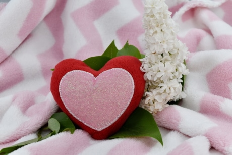 affection, blanket, decoration, heart, heartbeat, lilac, love, marriage, married, Valentine's day
