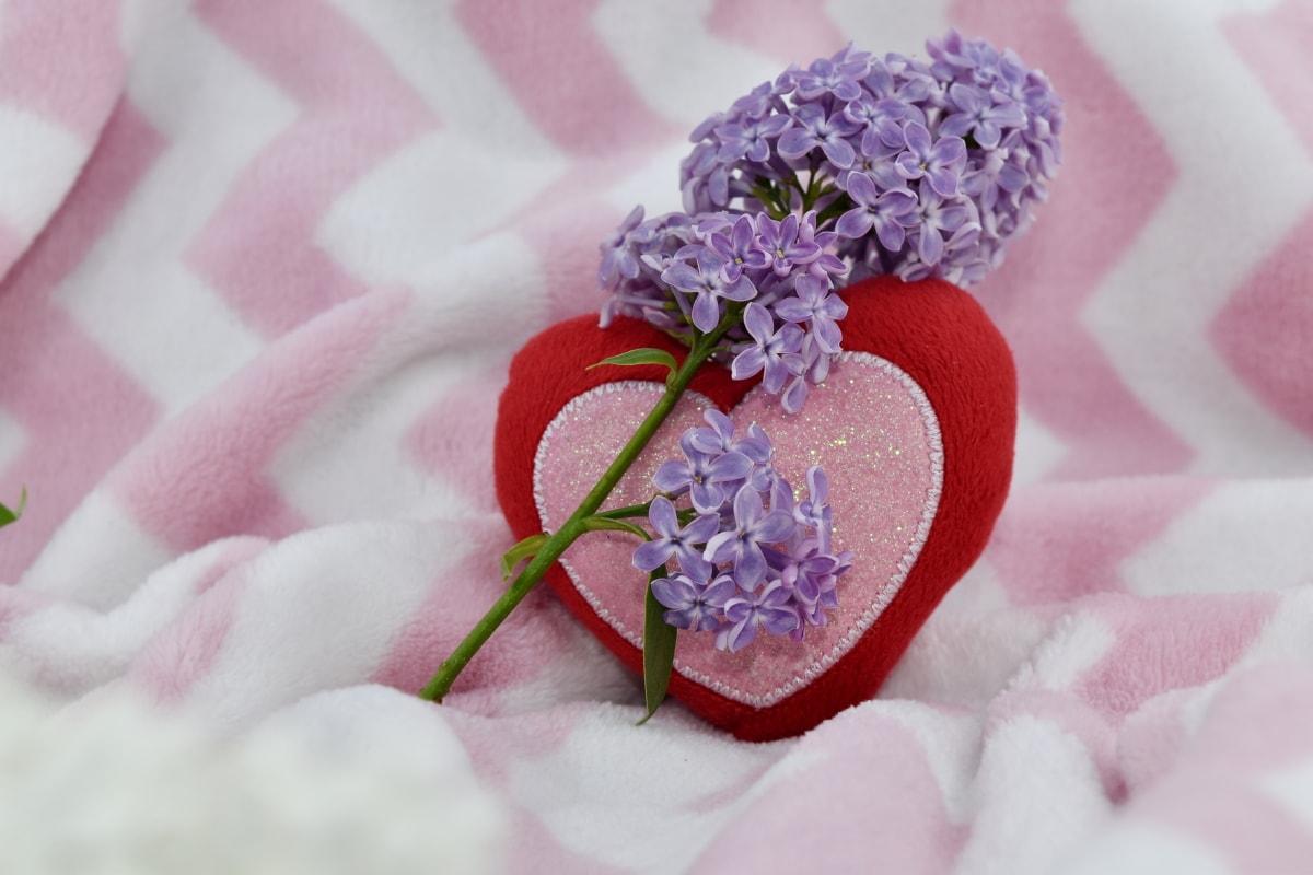 kalp, Leylak, aşk, mor, Menekşe, çiçek, Petal, pembe, romantizm, doğa