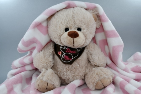 blanket, innocence, love, romance, teddy bear toy, yellowish brown, toy, cute, bear, funny