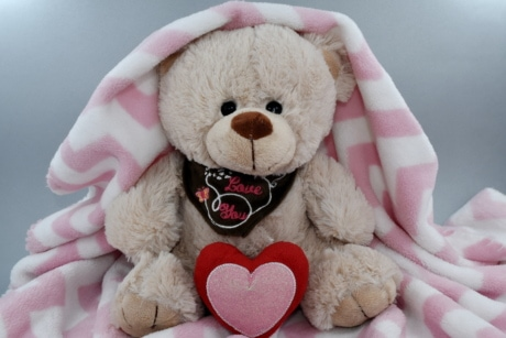 blanket, doll, heart, love, message, romance, Valentine's day, cute, teddy bear toy, bear