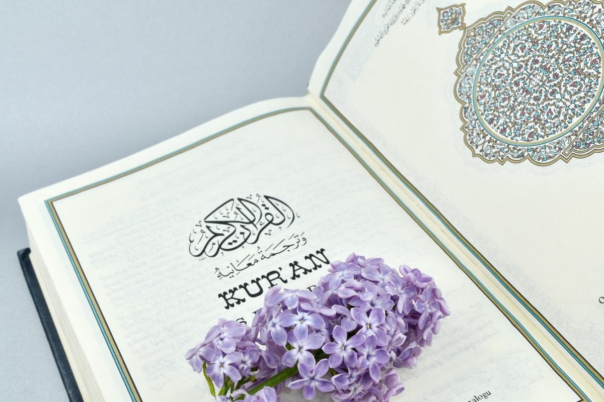 Arabesque, Arabština, kniha, květ, dědictví, cesmína, Islám, lila, gramotnost, papír