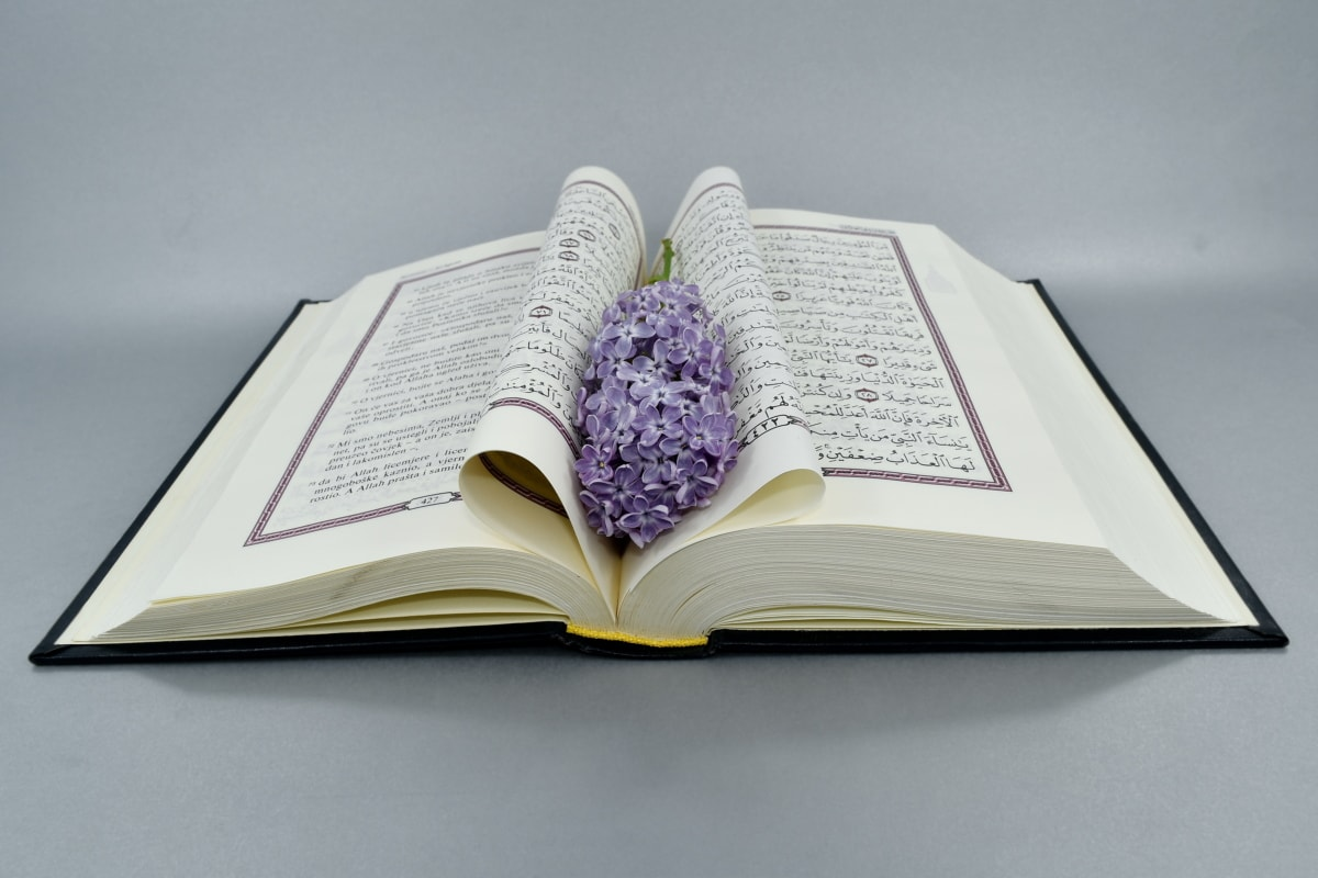 arabic, book, literature, knowledge, education, paper, library, page, school, wisdom