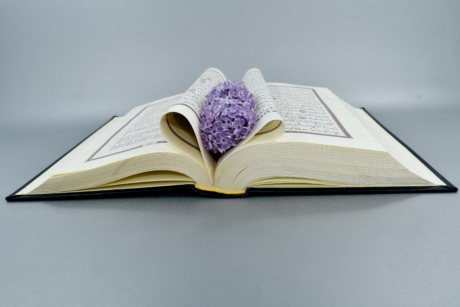 arabesque, arabic, Islam, lilac, notebook, knowledge, literature, book, education, paper
