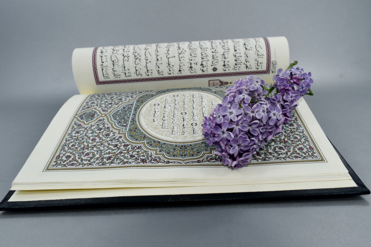 arabesque, Islam, lilac, religious, wisdom, education, knowledge, literature, color, room