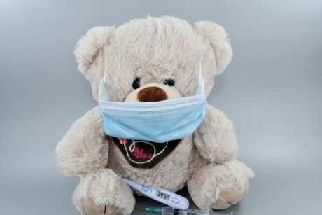 face mask, health care, medical care, syringe, teddy bear toy, vaccination, toy, gift, cute, winter