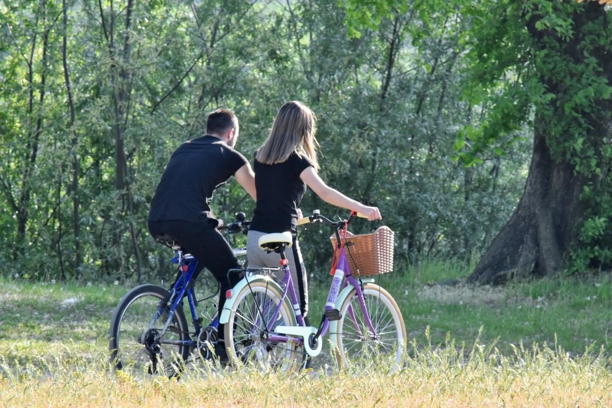 namorado, gozo, trilha da floresta, namorada, natureza, relaxamento, raio de sol, caminhando, ao ar livre, lazer