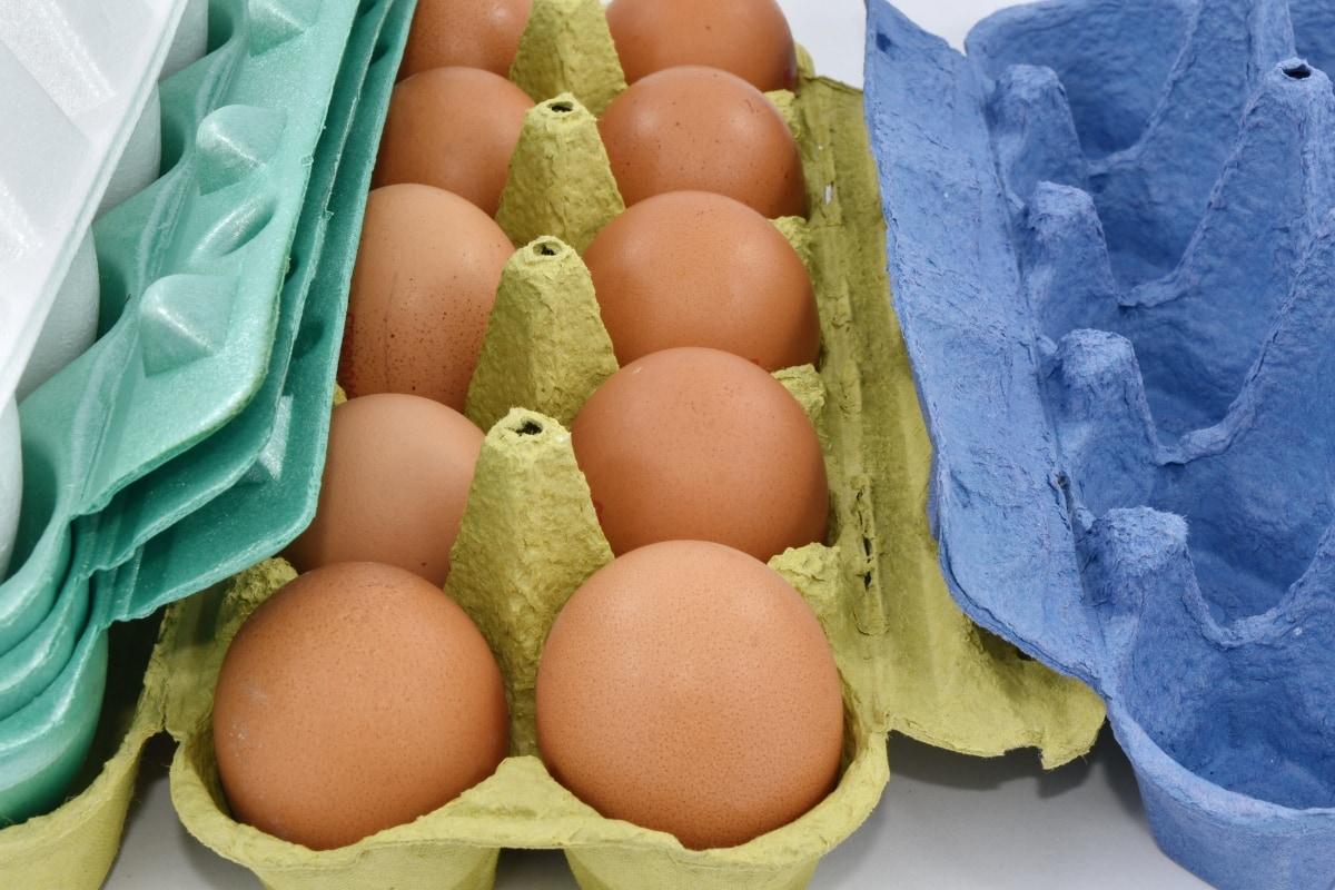 cardboard, egg, egg box, eggshell, merchandise, organic, packages, products, food, cholesterol