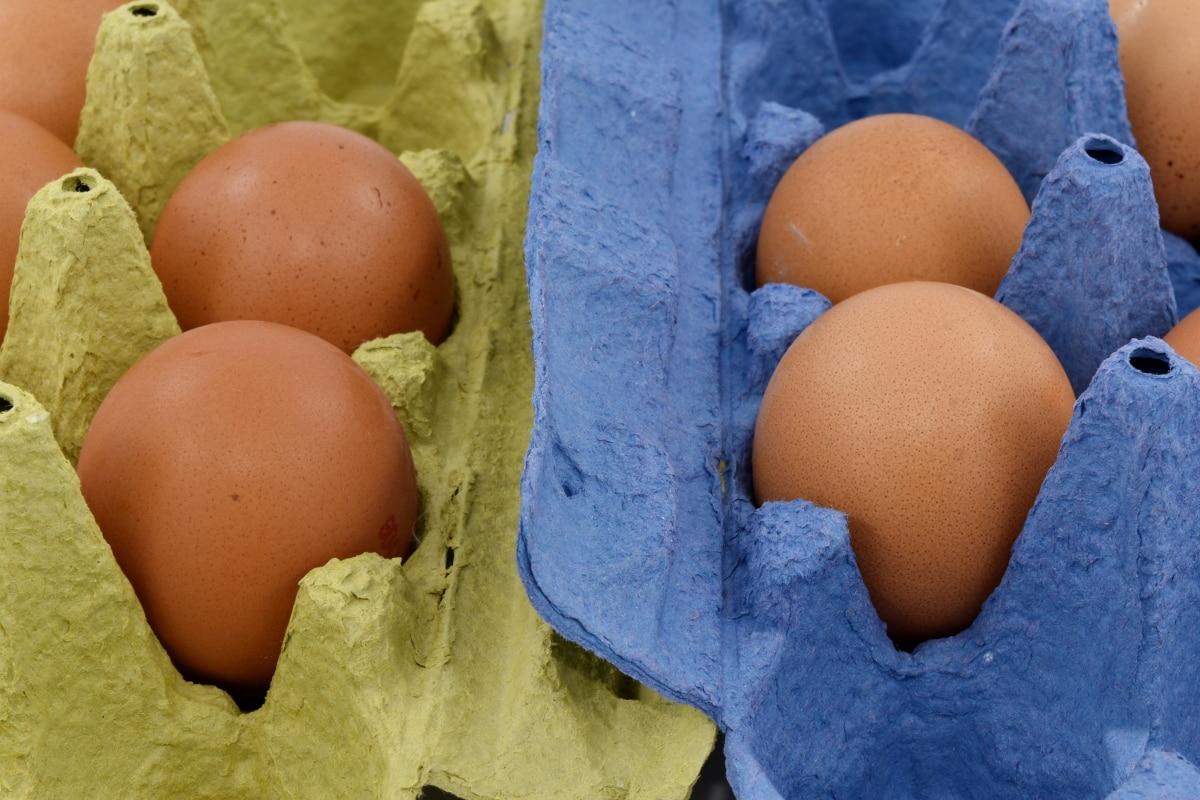 boks, karton, æg boks, æggeblomme, marked, pakke, produkt, æg, kylling, mad