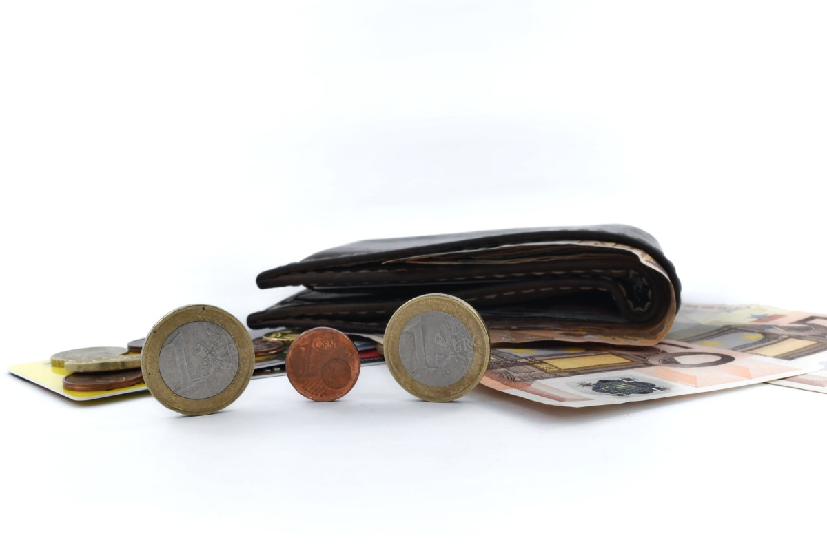 euro, money, savings, business, leather, currency, paper, old, retro, finance