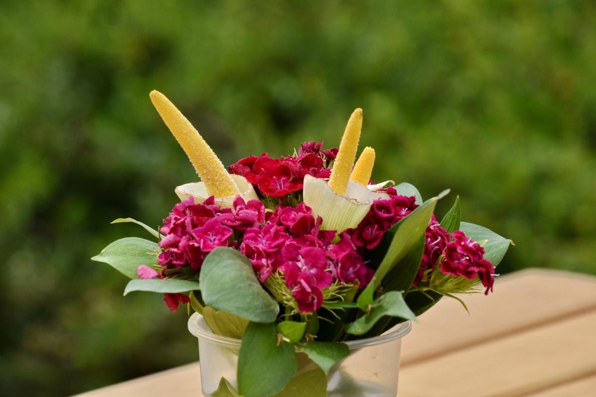 Garoafa, decor, natura statica, vaza, aranjament, buchet, floare, natura, vara, frunze