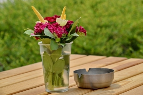ashtray, beautiful flowers, bouquet, carnation, desk, flowers, vase, flower, nature, leaf