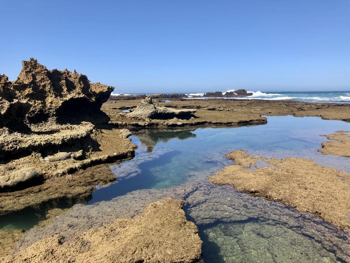 beach erosion, coral, ecosystem, reef, water, ocean, beach, nature, sea, landscape
