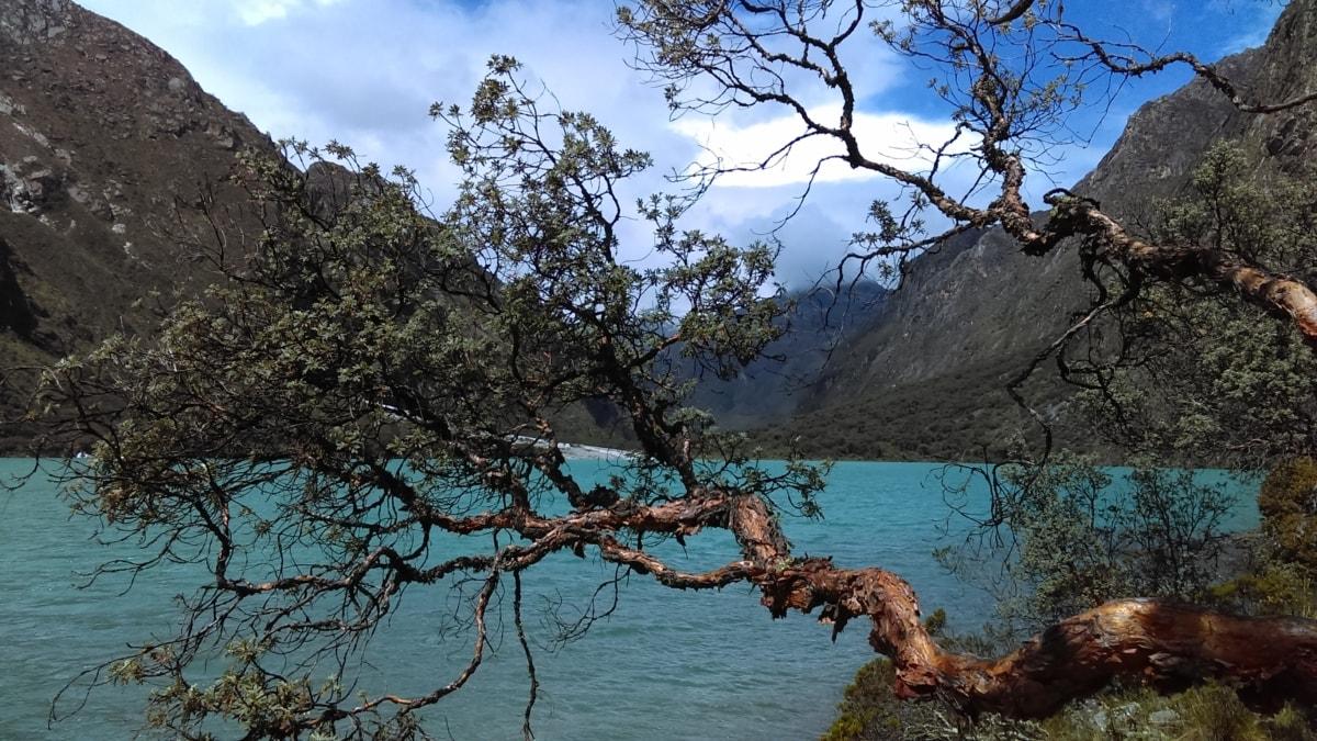 costline, přírodní park, letní sezona, strom, údolí, voda, povodí, příroda, krajina, skála