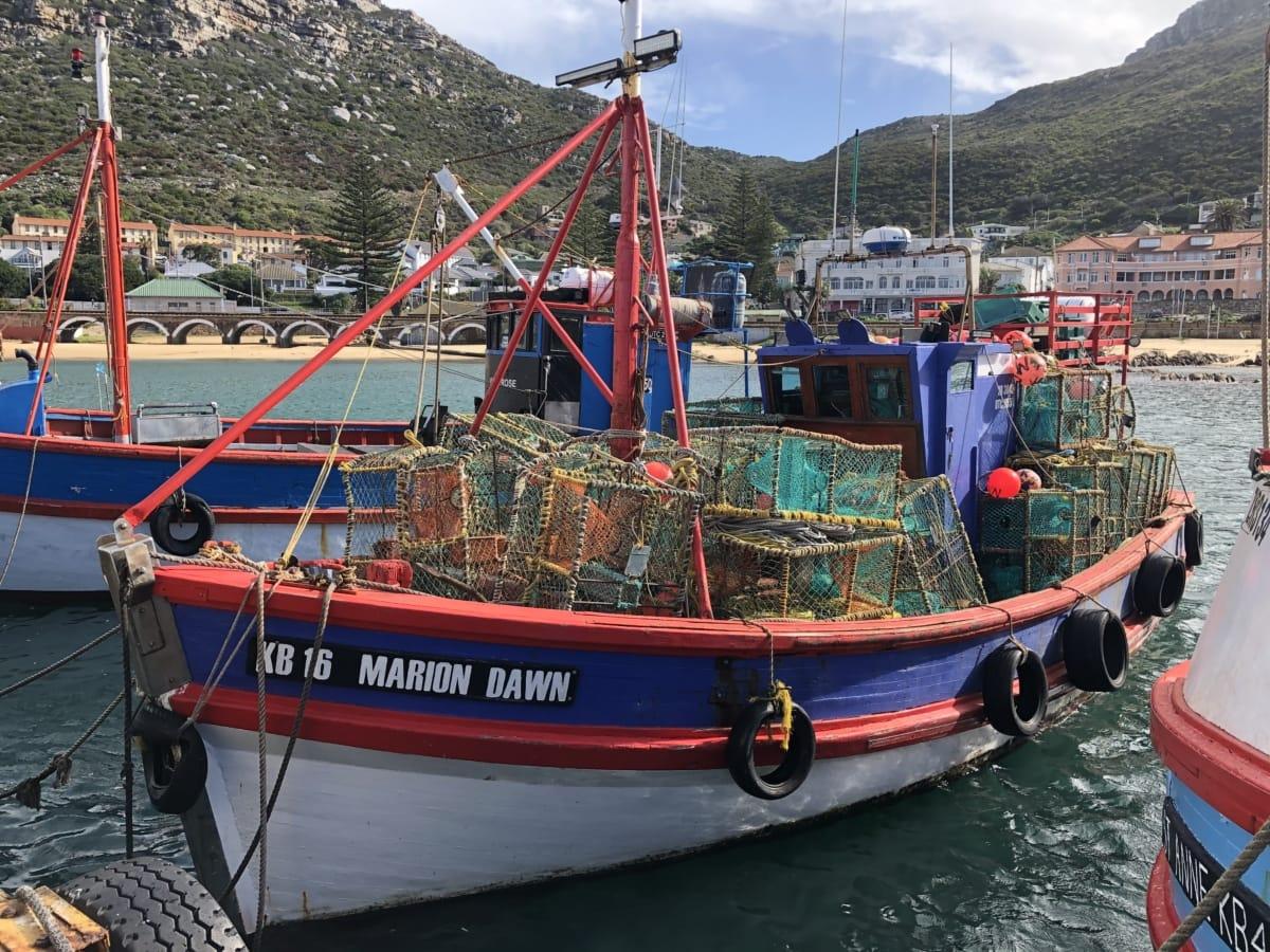 bateaux, coloré, bateau de pêche, engins de pêche, canne à pêche, réseau, zone urbaine, mer, eau, embarcation