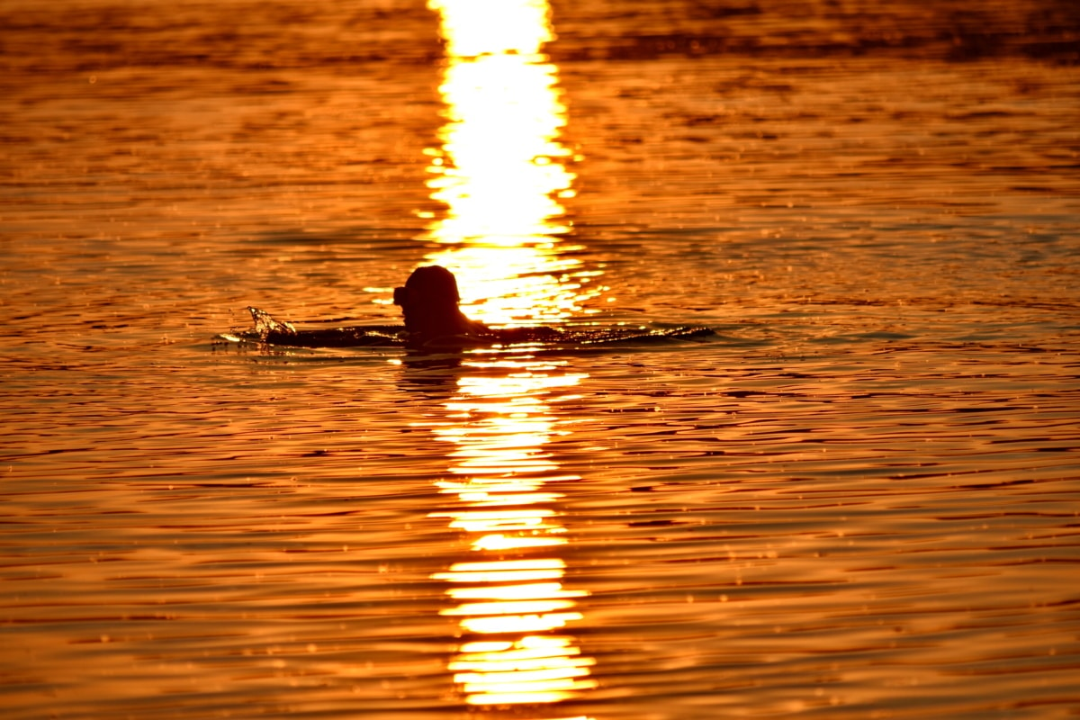 reflection, ripple, silhouette, summer time, sunset, swimmer, swimming, water level, dawn, sun
