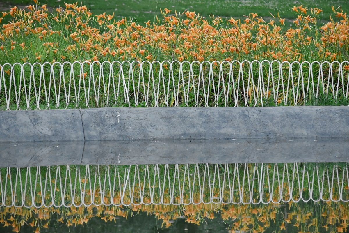 fence, flower garden, flowers, lake, lily, park, reflection, nature, field, flora
