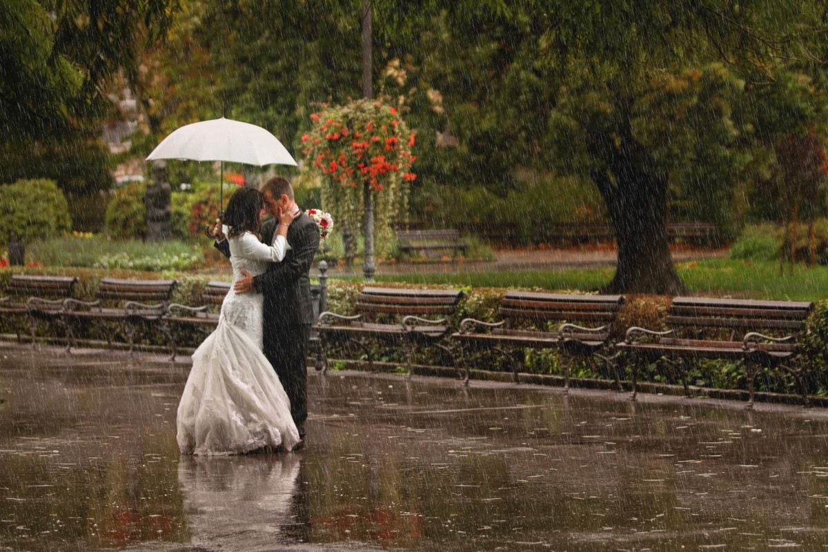 nevesta, šaty, teší, ženích, šťastie, krásne dievča, dážď, pouličné, dáždnik, dievča