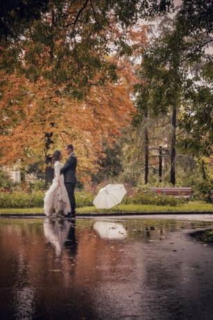 Herbstsaison, Kleid, herrlich, Bräutigam, Park, Regen, Regentropfen, Anzug, Regenschirm, Hochzeit