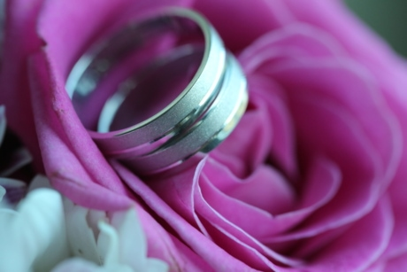 close-up, roses, wedding, wedding ring, romance, love, flower, rose, aromatherapy, nature