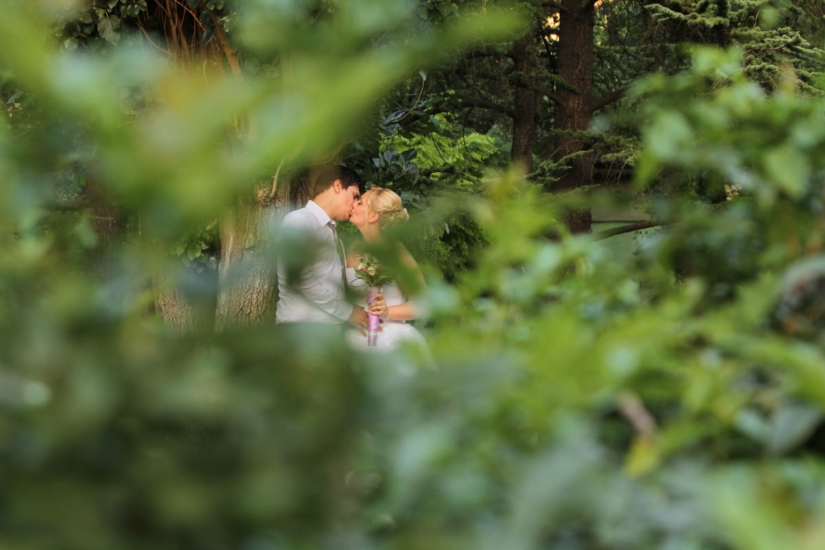 forest, handsome, kiss, pretty girl, romantic, spring time, blur, plant, outdoors, wood