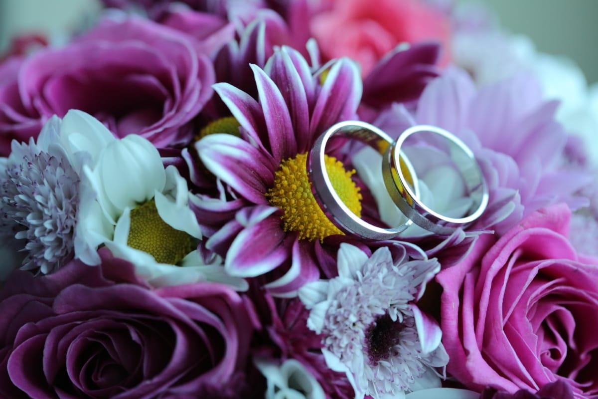 Imagine gratuită: buchet, inele, romantice, inel de nunta, decor, roz,  aranjament, floare, petale, flori