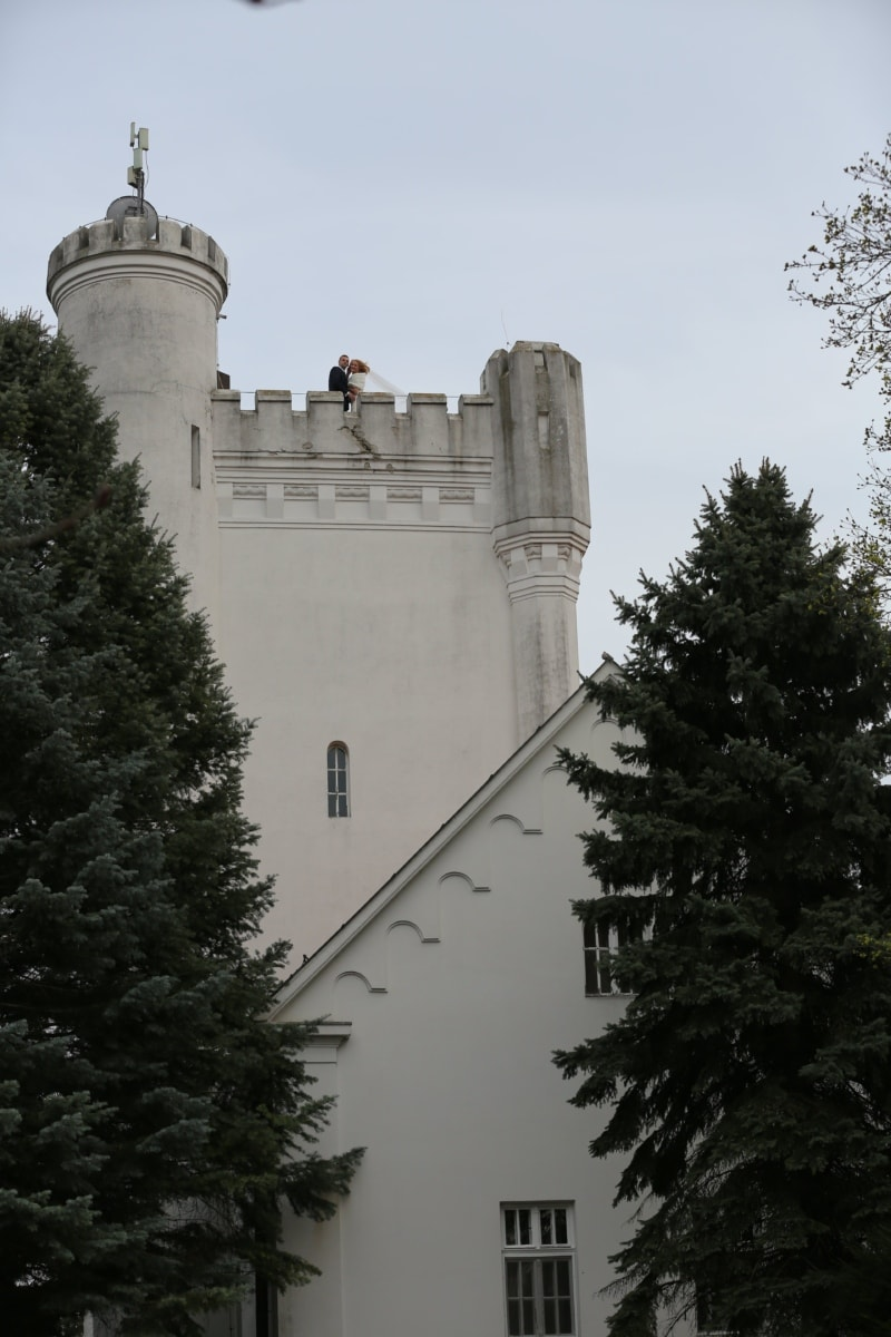 bride, castle, groom, marriage, wedding, tower, fortification, palace, architecture, fortress