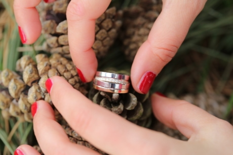 conifers, finger, hands, herb, rings, wedding, wedding ring, skin, hand, woman