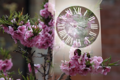 analog clock, bouquet, pink, arrangement, flowers, flower, wedding, bride, rose, decoration