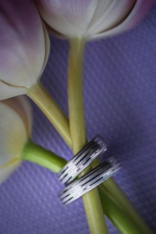 poupě, květiny, bižuterie, láska, kroužky, tulipány, svatba, snubní prsten, květ, list