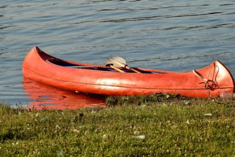 kanu, vožnja kanuom, veslo, crveno, brod, obala rijeke, obuća, brod, kajak, voda