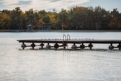 dock, lakeside, resort area, seagulls, tourist attraction, water, pier, device, river, lake