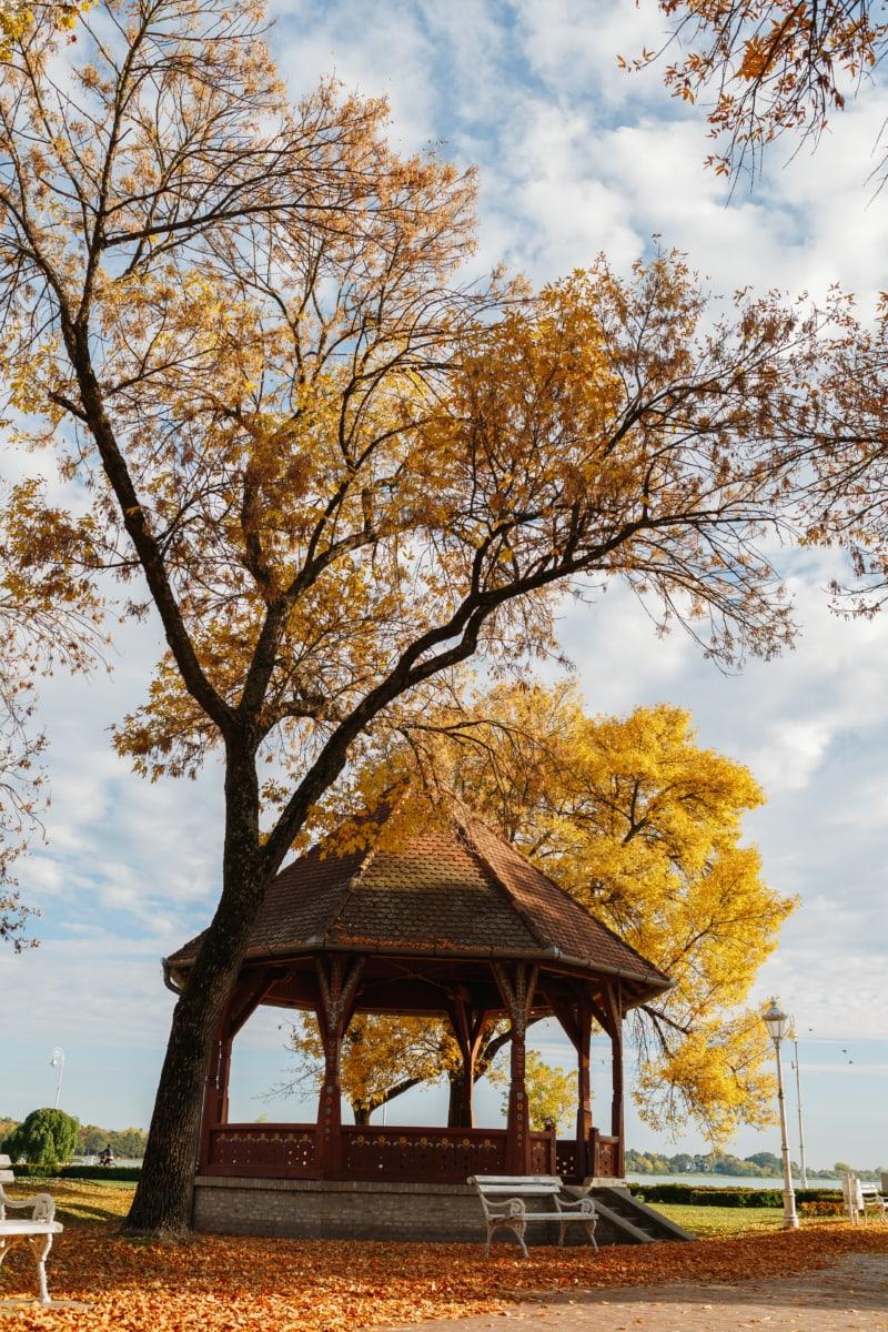 herfst seizoen, buitenkant, eik, Vakantiegebied, toeristische attractie, bomen, landschap, hout, boom, bos
