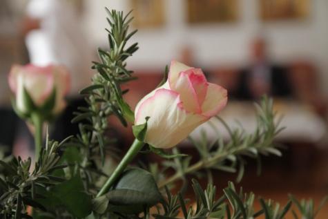 boeket, roze, rozemarijn, witte bloem, bloesem, bloem, knop, tuin, roze, bloeien